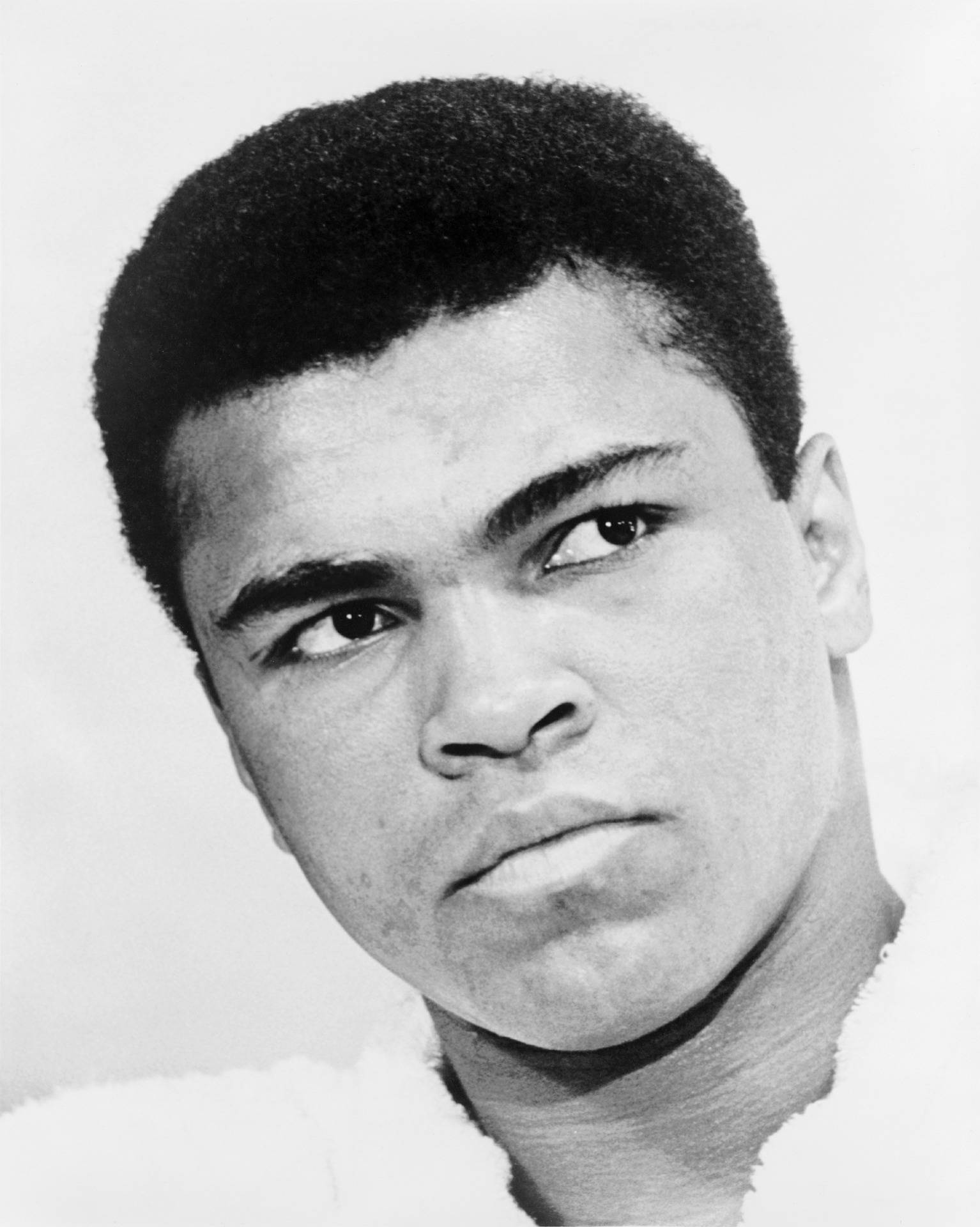 /www.aklander.co.uk/image/catalog/1 muhammad-ali-572571_1920