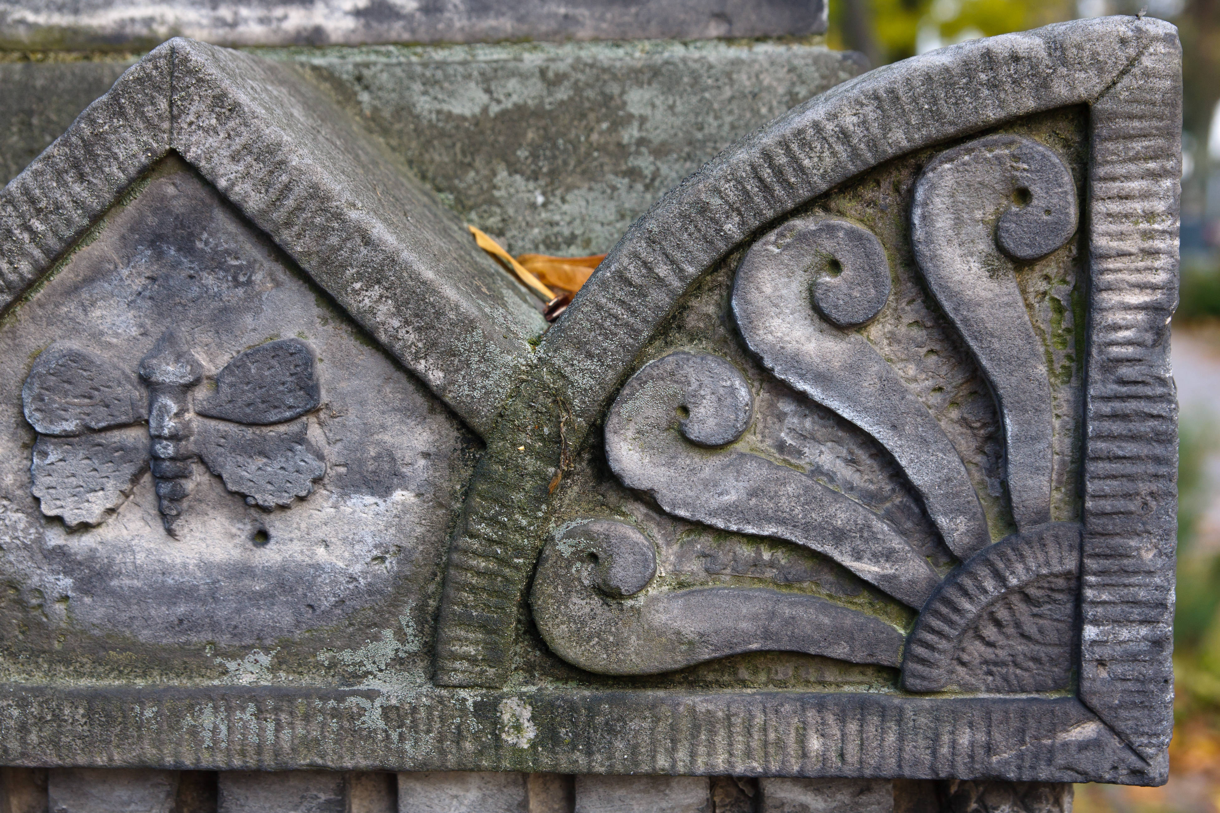 carved insect on headstone